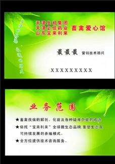 绿色背景素材名片图片