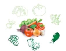 蔬菜素描和蔬菜高清圖圖片