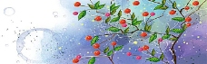 花瓣背景图